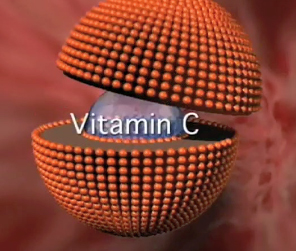 Split liposome showing vitamin C encapsulation