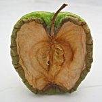 oxidative stress in fruit