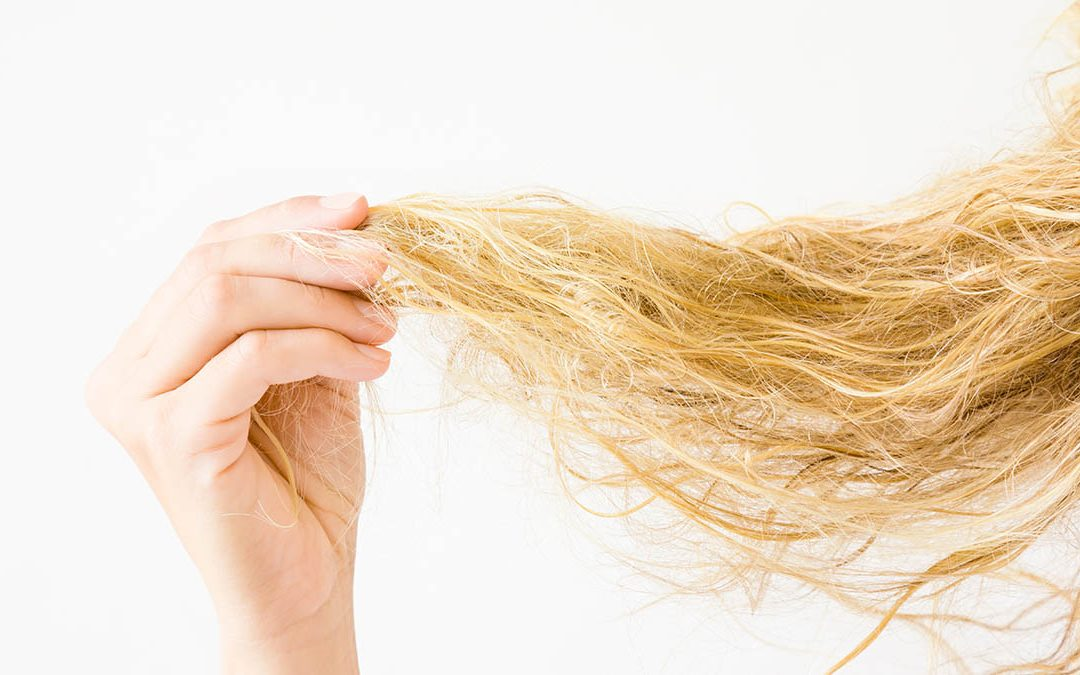 woman's hand holding tangled, dry hair, which is one of the vitamin c deficiency symptoms