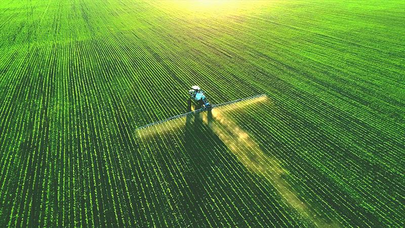Pesticides and Oxidative Stress